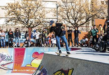 Gescom Skate Park Armilla