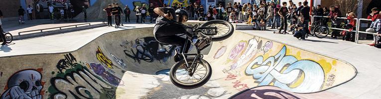 Gescom Skate Parks
